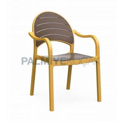 Kollu Renkli Antrasit Sarı Sandalye